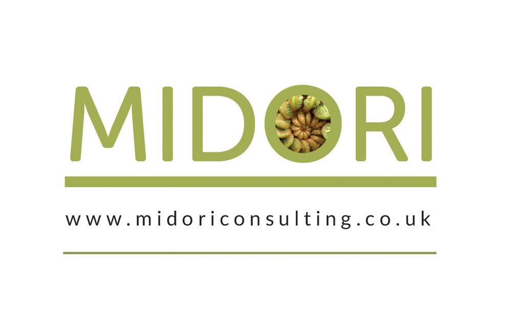 Logo for Midori Consulting B2B