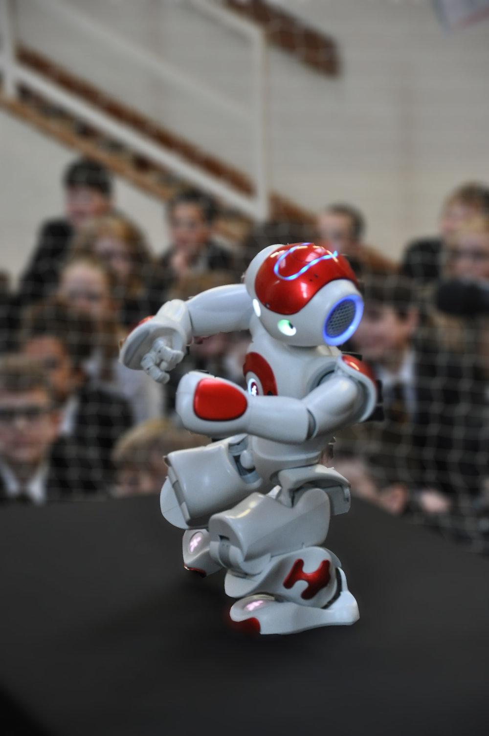 The robot practising Tai Chi
