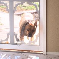 Thankfully you don't have to break through screen doors to contact us.