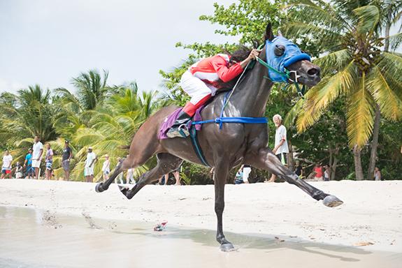 carrera caballos.jpg