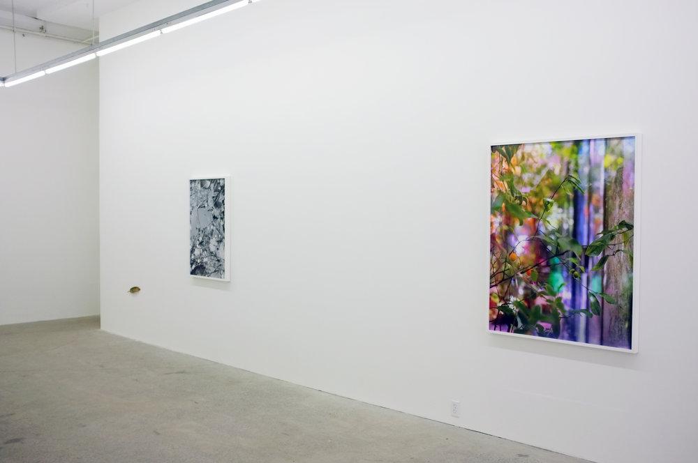 Lorna Bauer,  Blue Fountain , 2016, vue d'exposition.