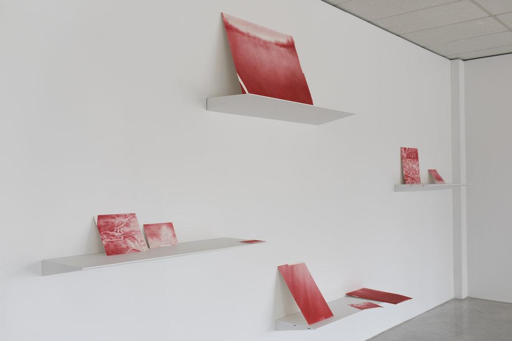 Andréanne Godin,  Les chemins de résistance , 2017, vue d'exposition à la Galerie YL-S.