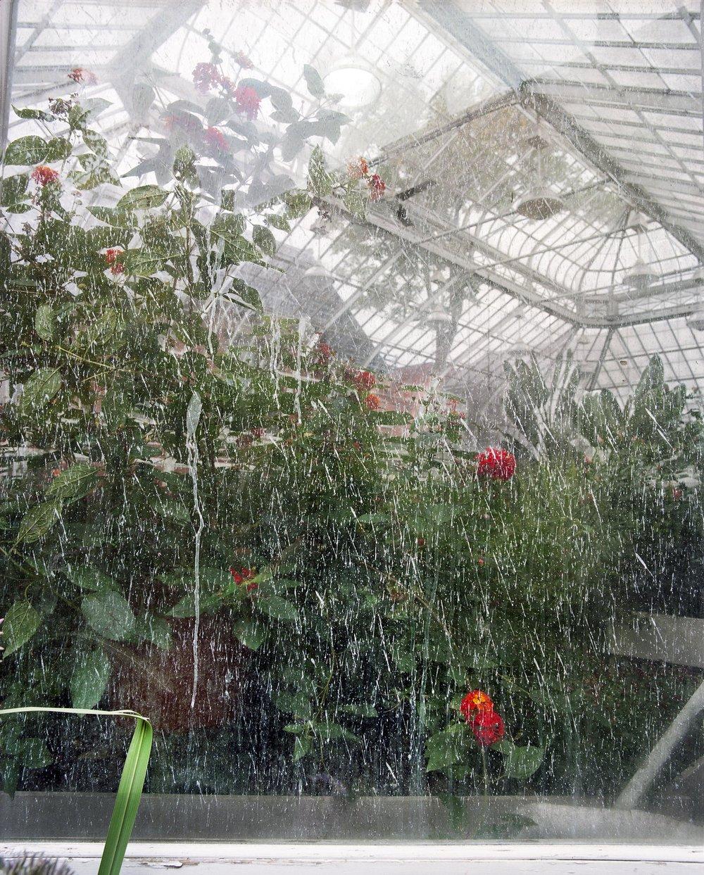 "Lorna Bauer, The Westmount Conservatory and Greenhouse, 2018, impression au jet d'encre, 99 x 79 cm (39"" x 31"")"