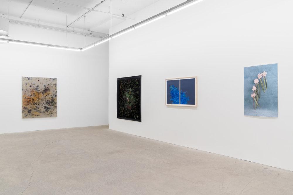 GalerieNicolasRobert (3 of 19).jpg
