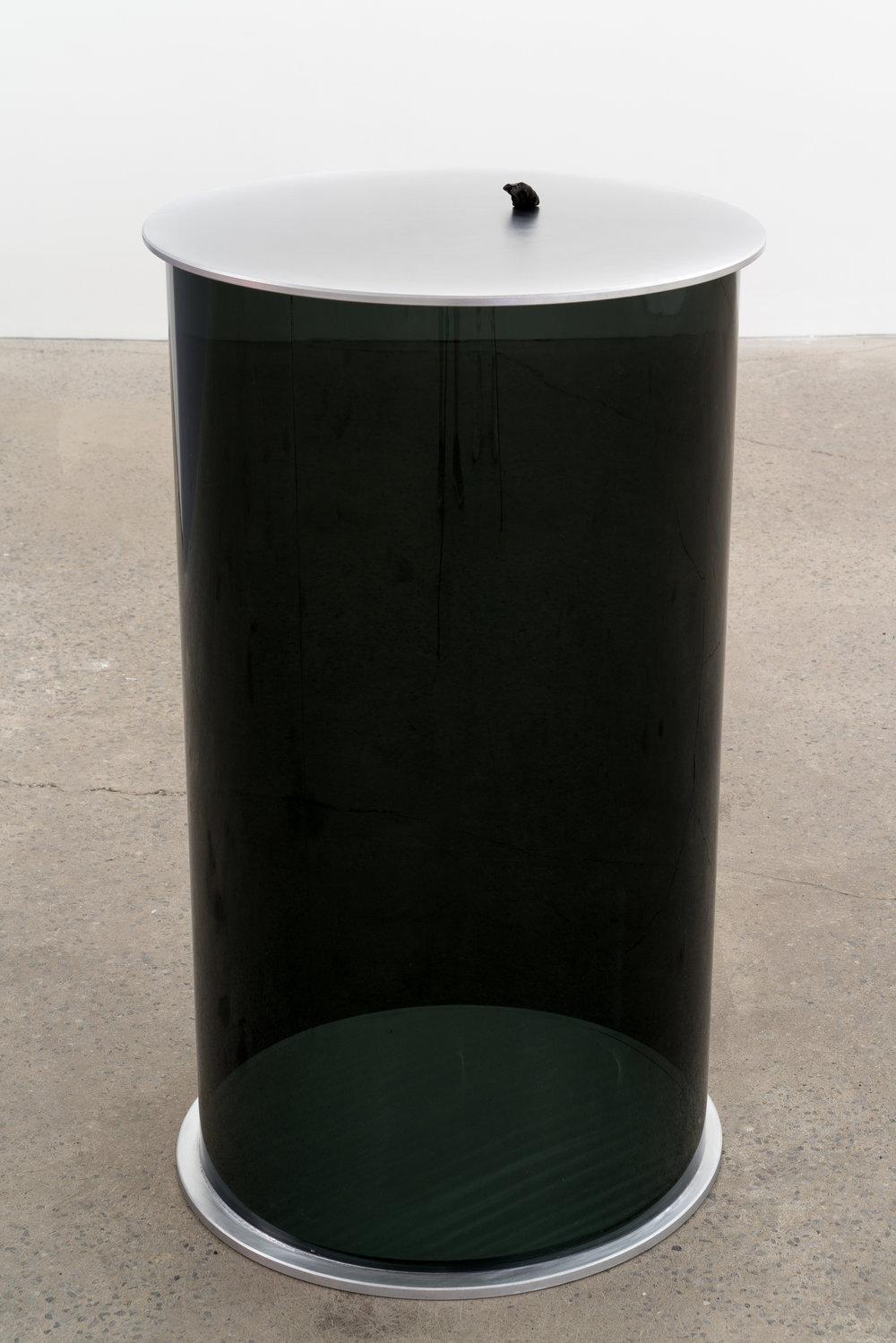 "Carl Trahan, Der Rib, 2018, météorite, plexiglas et aluminium, 94 x 53 x 53 cm (37"" x 21.5"" x 21.5"")"