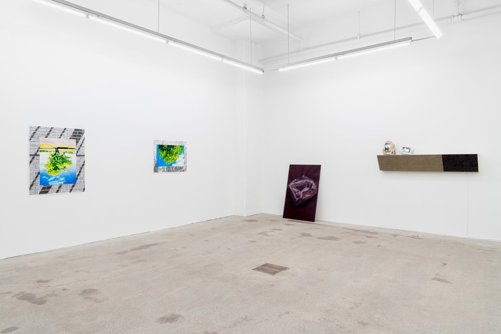 GalerieNicolasRobertNovembre2018 (12 of 27).jpg
