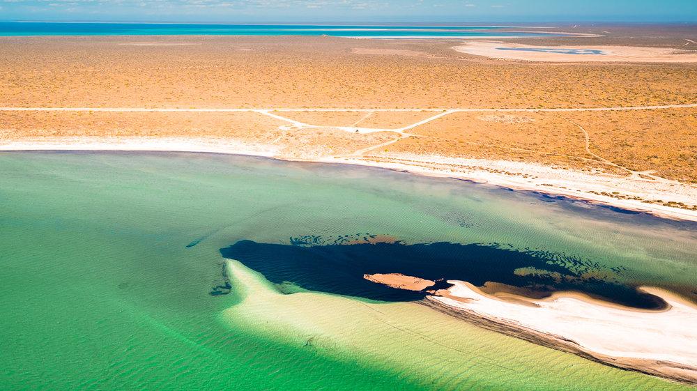 Shark Bay, WA