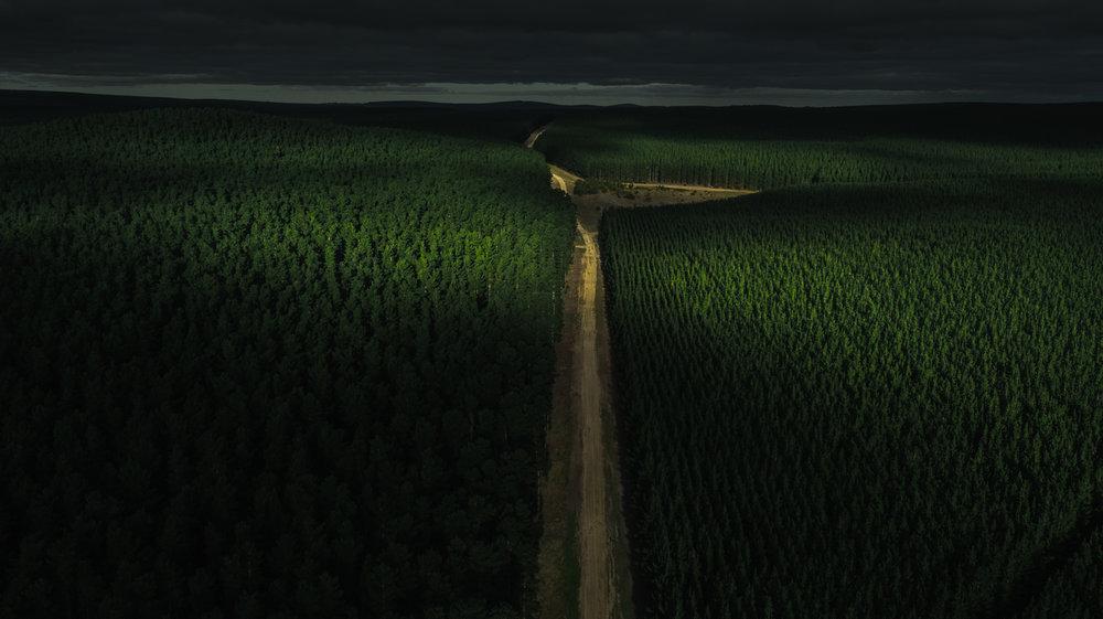 Tantanoola, SA