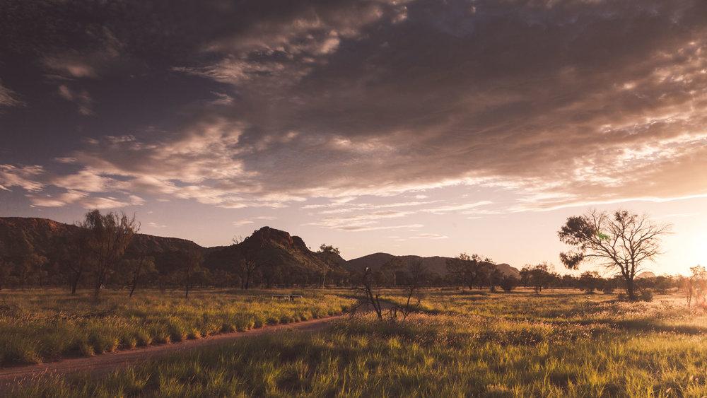 Desert Park, NT