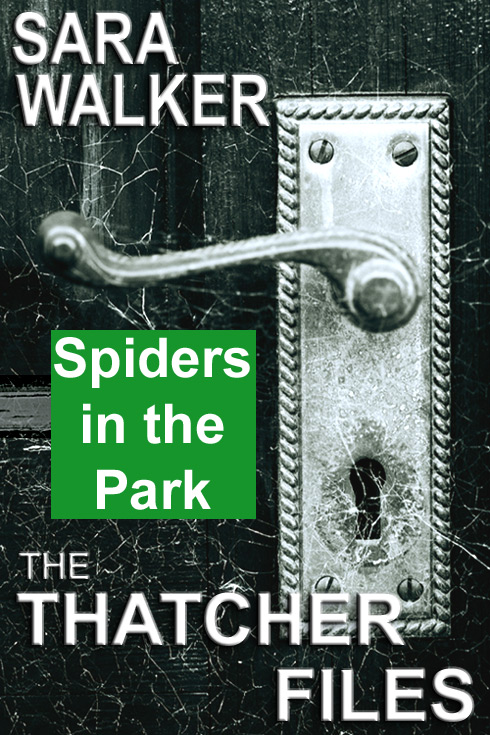 spiders in the park
