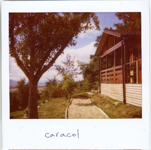 caracol2.jpg