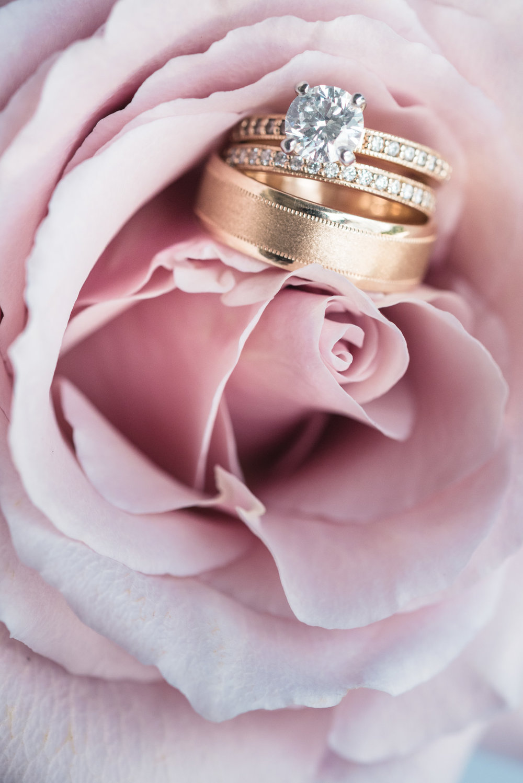 Ring details in flower