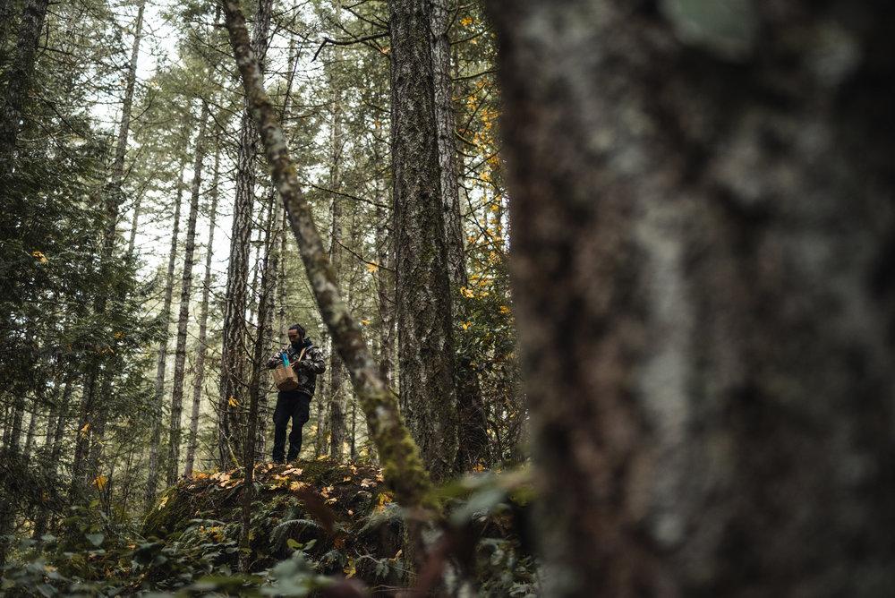 Mushroom picker in forest