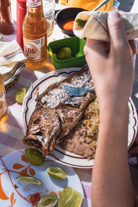 Punta Mita deep fried fish meal