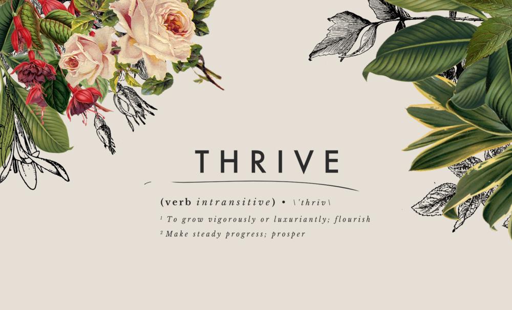 ThriveHeader.png