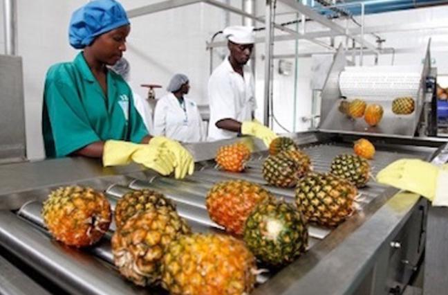 Agro-Preneur Initiative