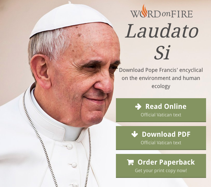 Click on image to access the encyclical