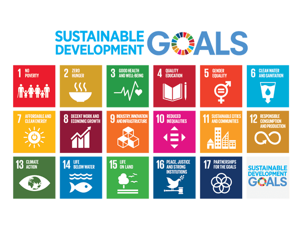 Areas of focus identified at VIIC 2018 include Sustainable Development Goals  3, 8, 10, 13, 16,  and  17.