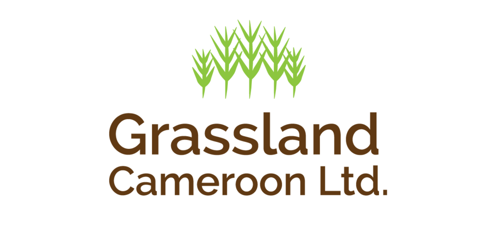 Grassland-Cameroon_Colour.png