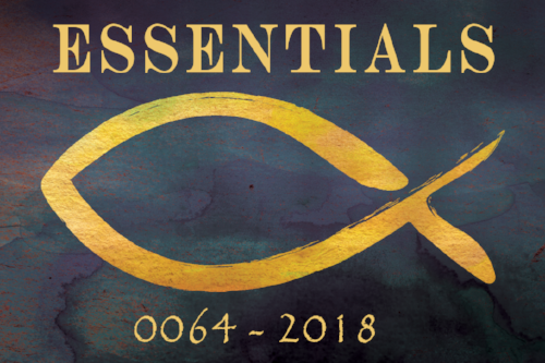 essentials0064 (1).png