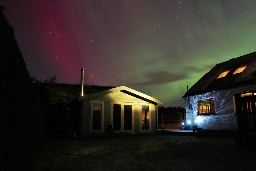 Aurora in my garden
