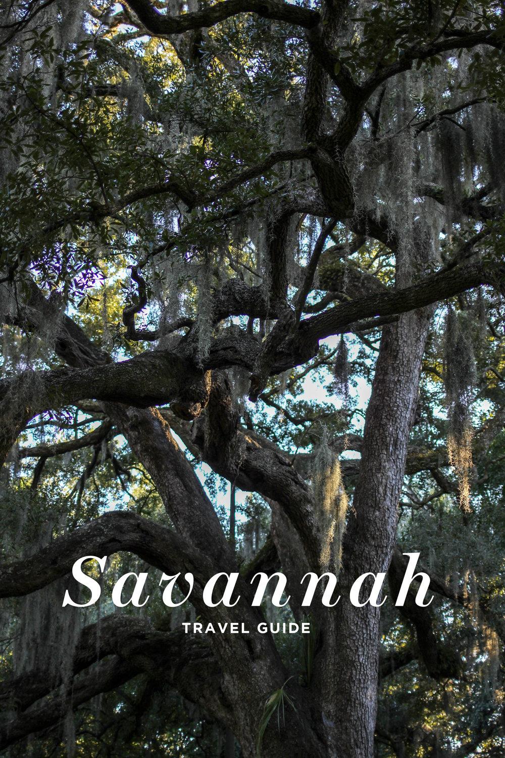 savannah_tg.jpg