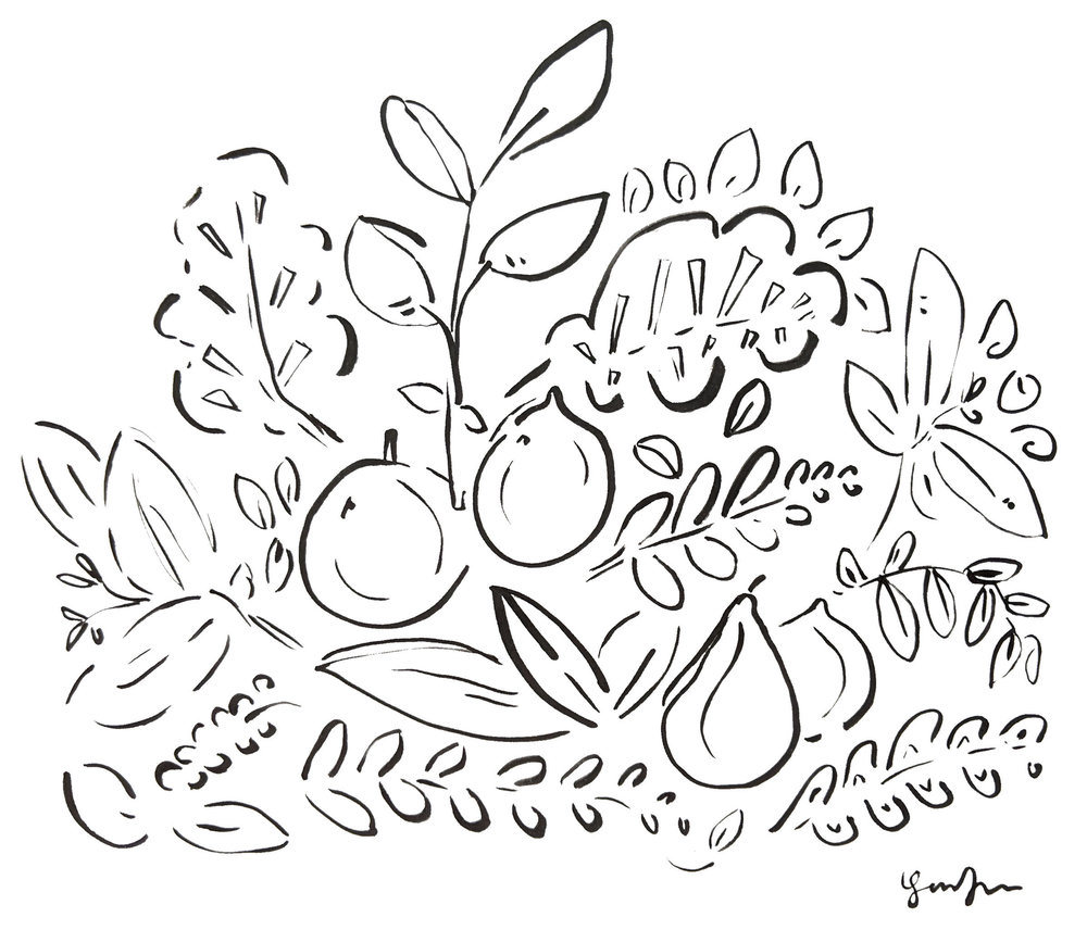 Illustration by  Lindsey Frances  |  Buy a print here