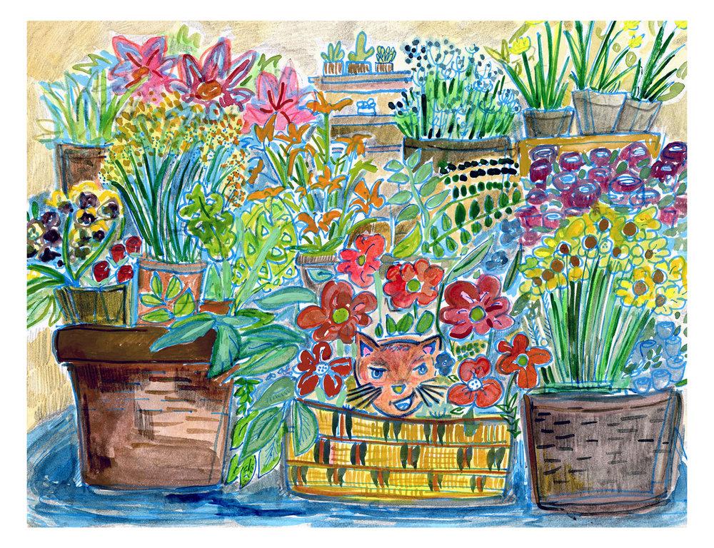 Bodega cat illustration by  Lindsey Frances