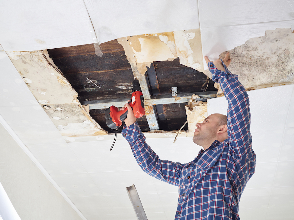 Handyman Services   No problem we can't solve.   FREE QUOTE