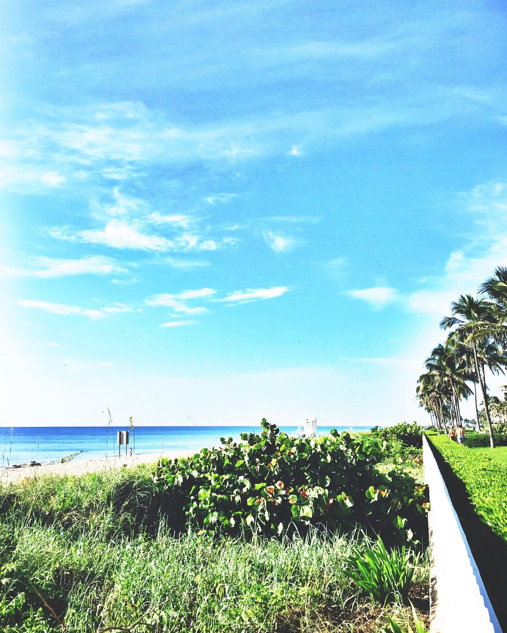 The beach is the perfect place to end up after a walk, jog, or longboard ride.