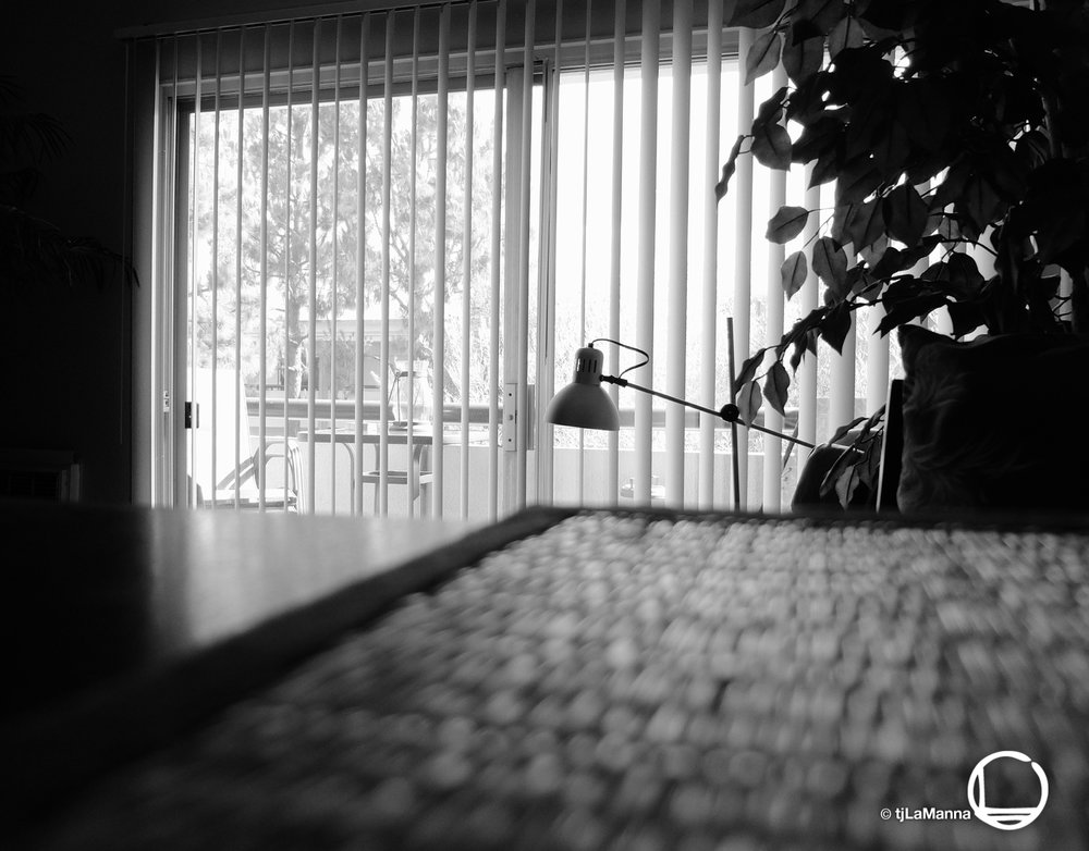 DSCF1209_©TjLaManna.jpg