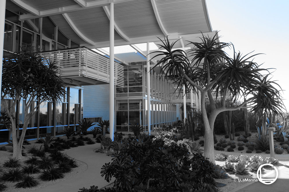 Newport Beach Public Library Gardens