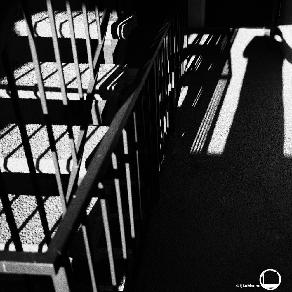 PC210014 2_©TjLaManna.jpg