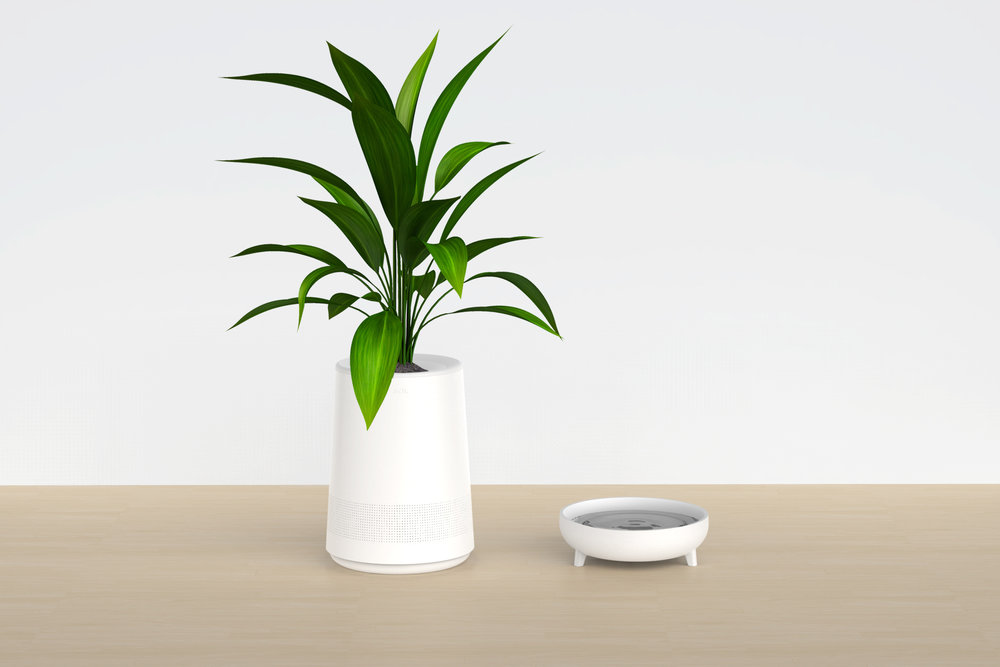 Sol_Plant_Water.jpg