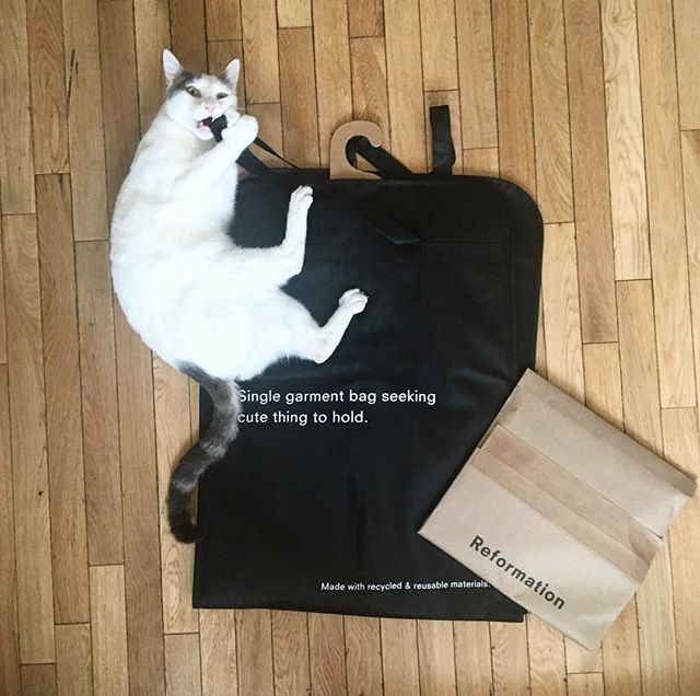 Popping my @reformation cherry for a wedding this weekend. Sustainable sourcing transparency paired with great design and branding: VERY hard to find. We appreciate you. -Me and Jupiter ♻️ #packaginggoals #brandgoals #reformation #recycle #reuse #sustainablefashion #futureoffashion