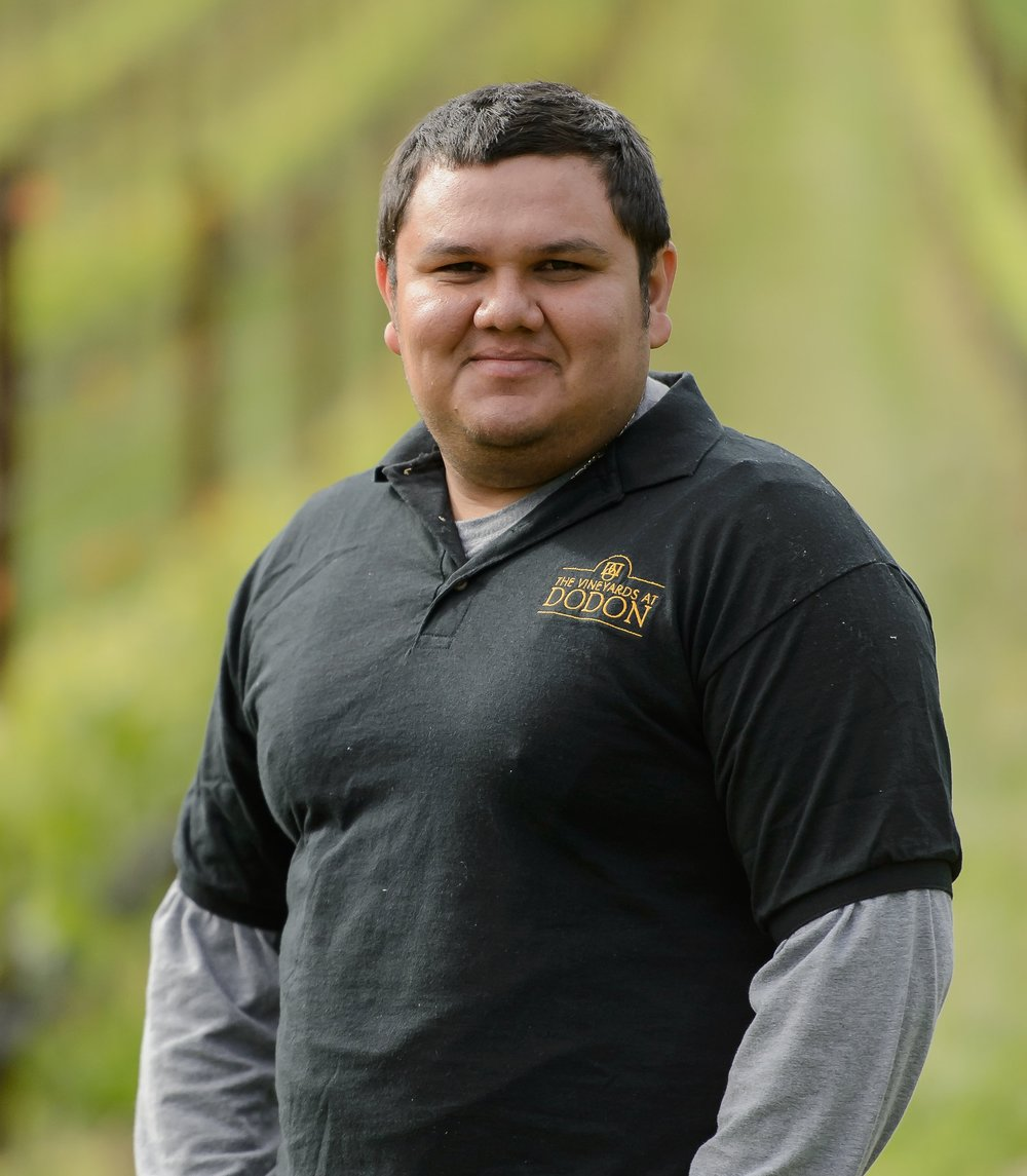 Mario Amaya-Rubio, vineyard associate