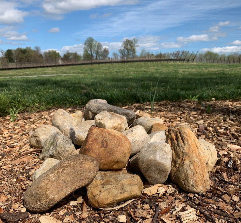 Rocks from diverse origins transported during the Pleistocene to Dodon by nature.