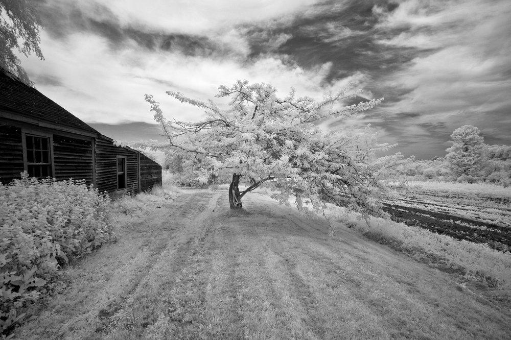 Schoolhouse Farm, Warren ME