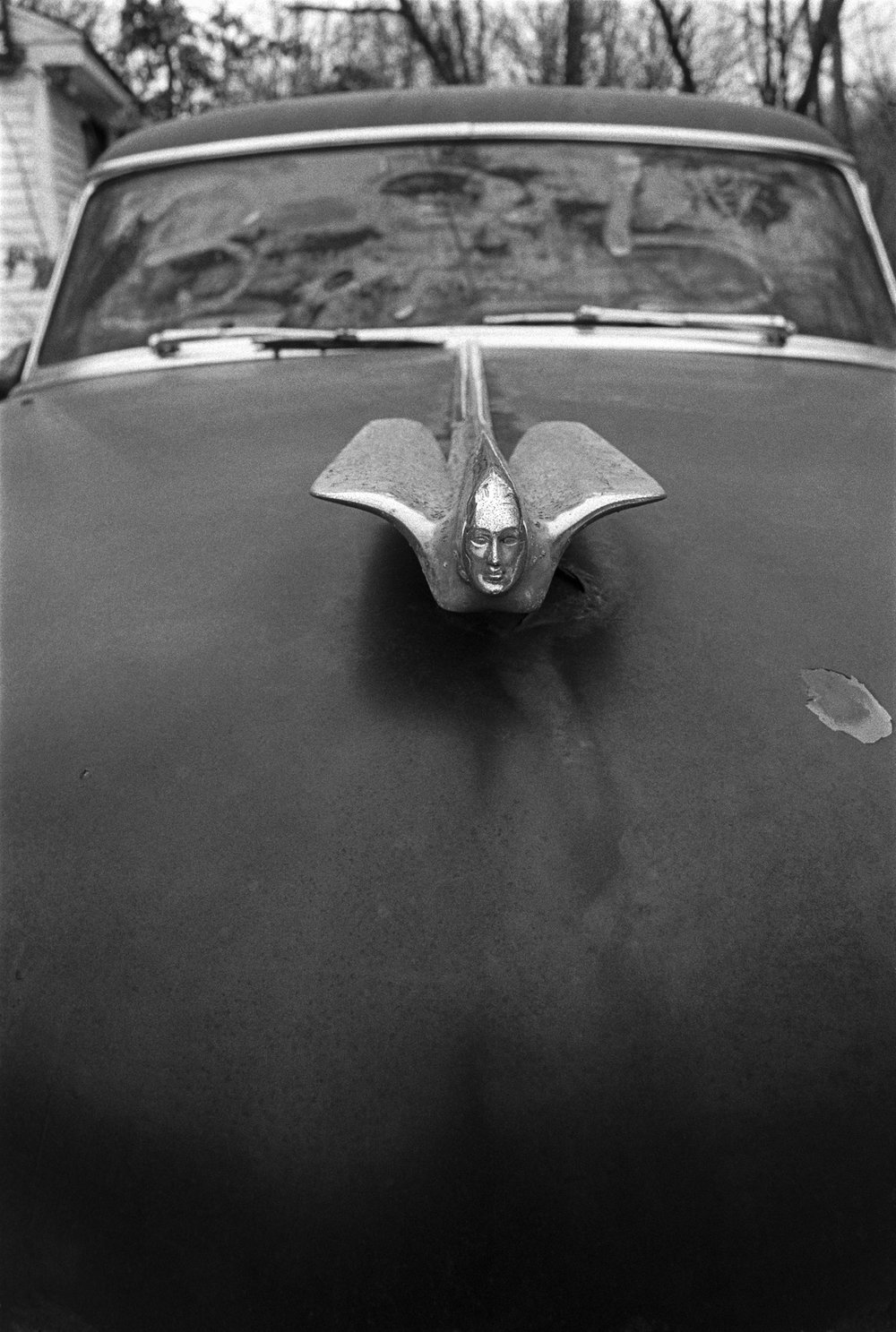 Sandy's Caddy's hood ornament.jpg