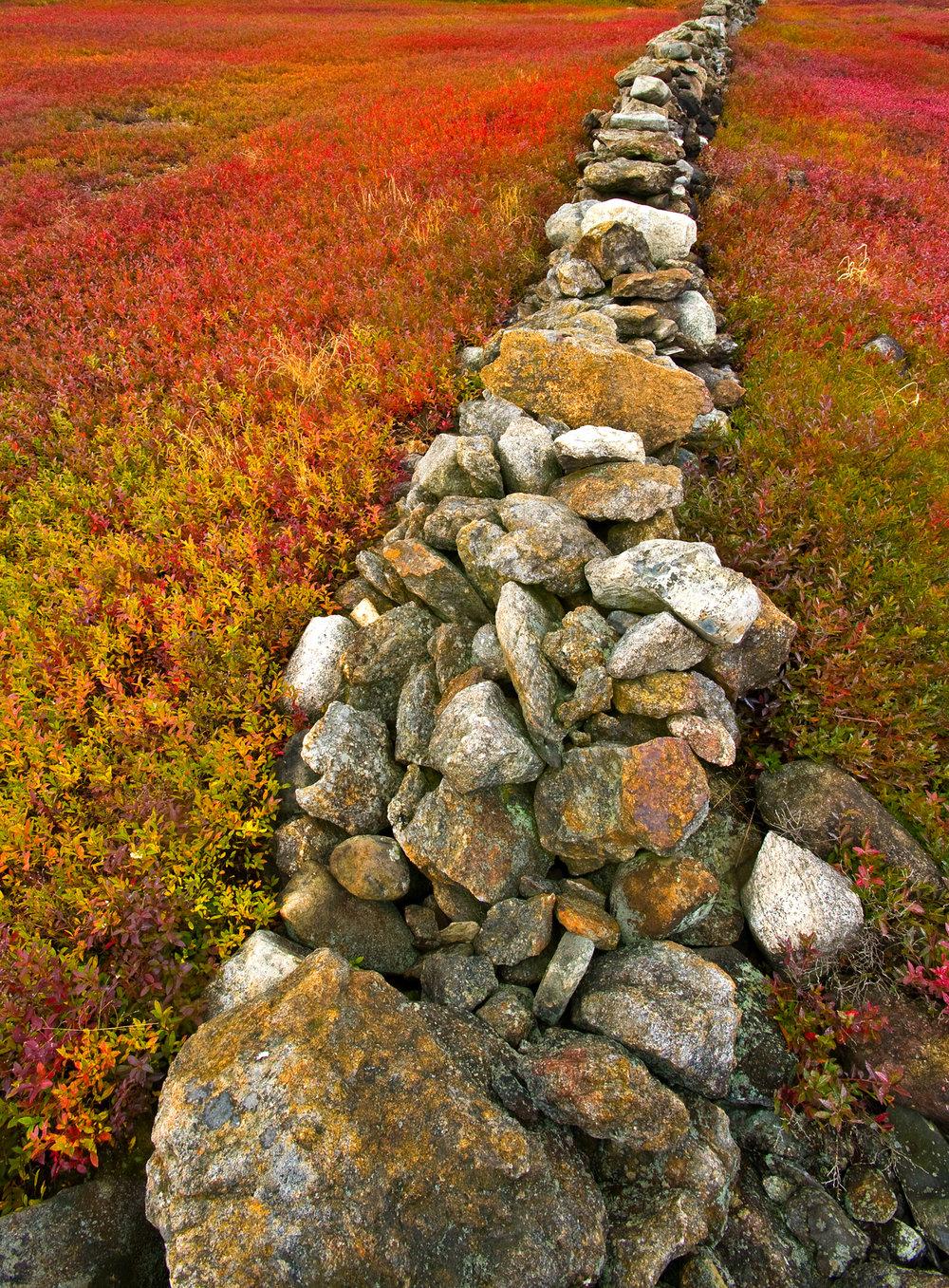 Appleton stone wall.jpg