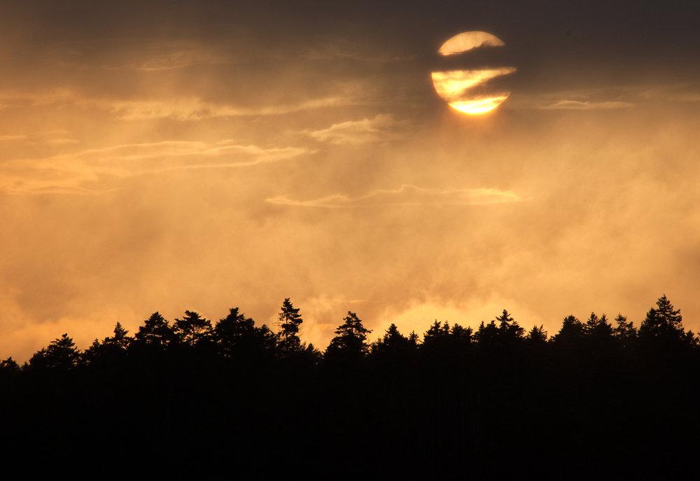Martin Pt sunset.jpg