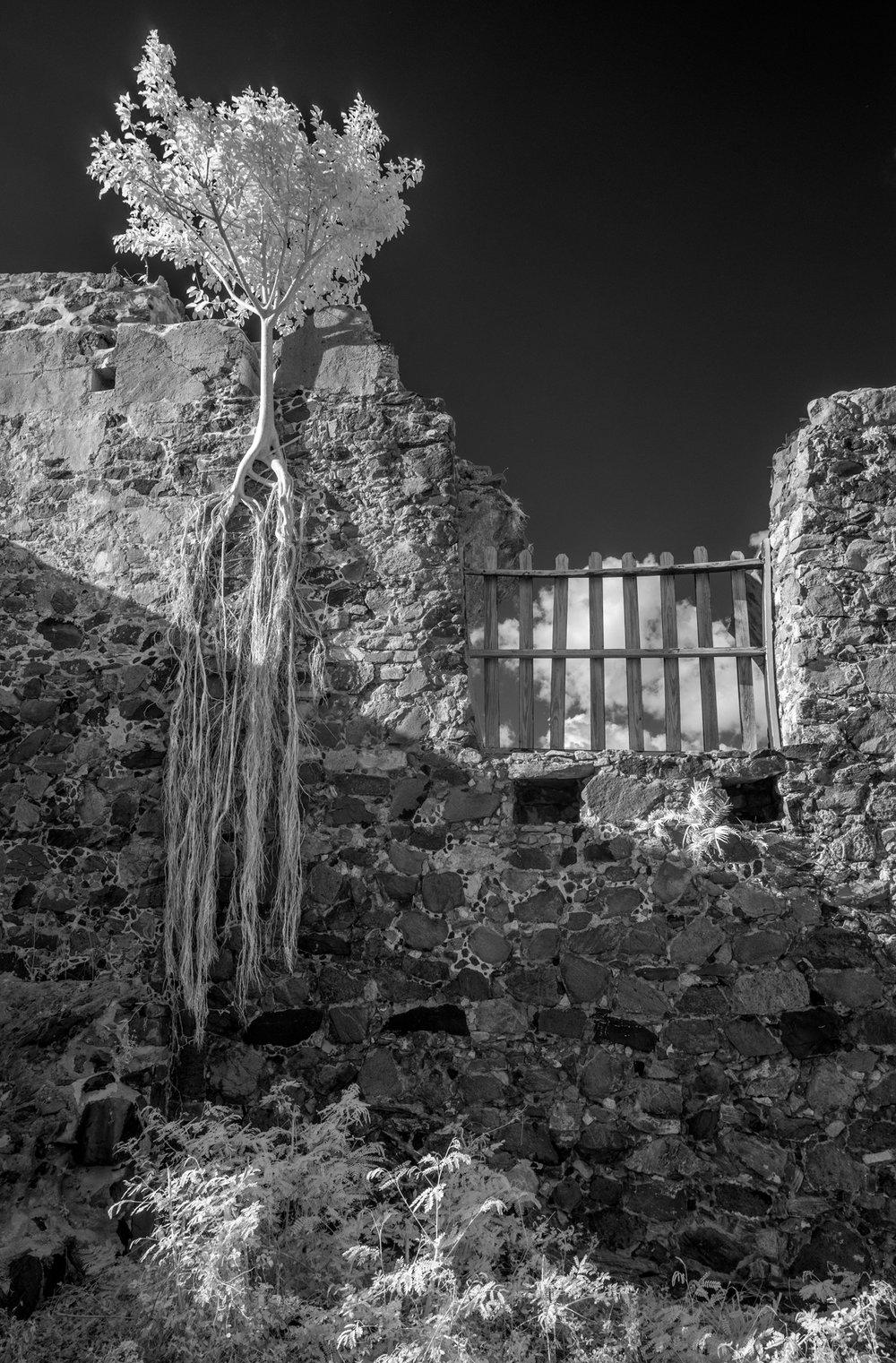 Annaberg Plantation, St John USVI