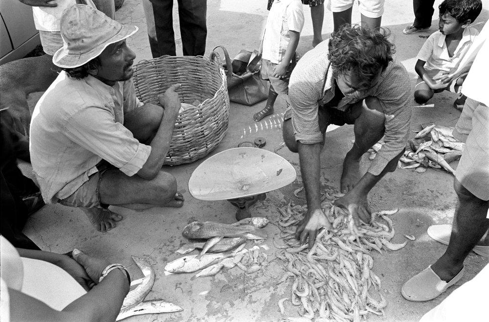 Trinidad 1973
