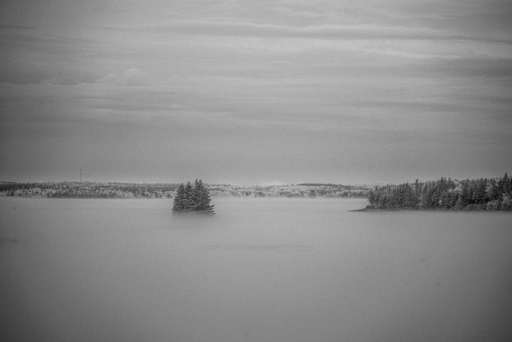 Hatchet Cove fog