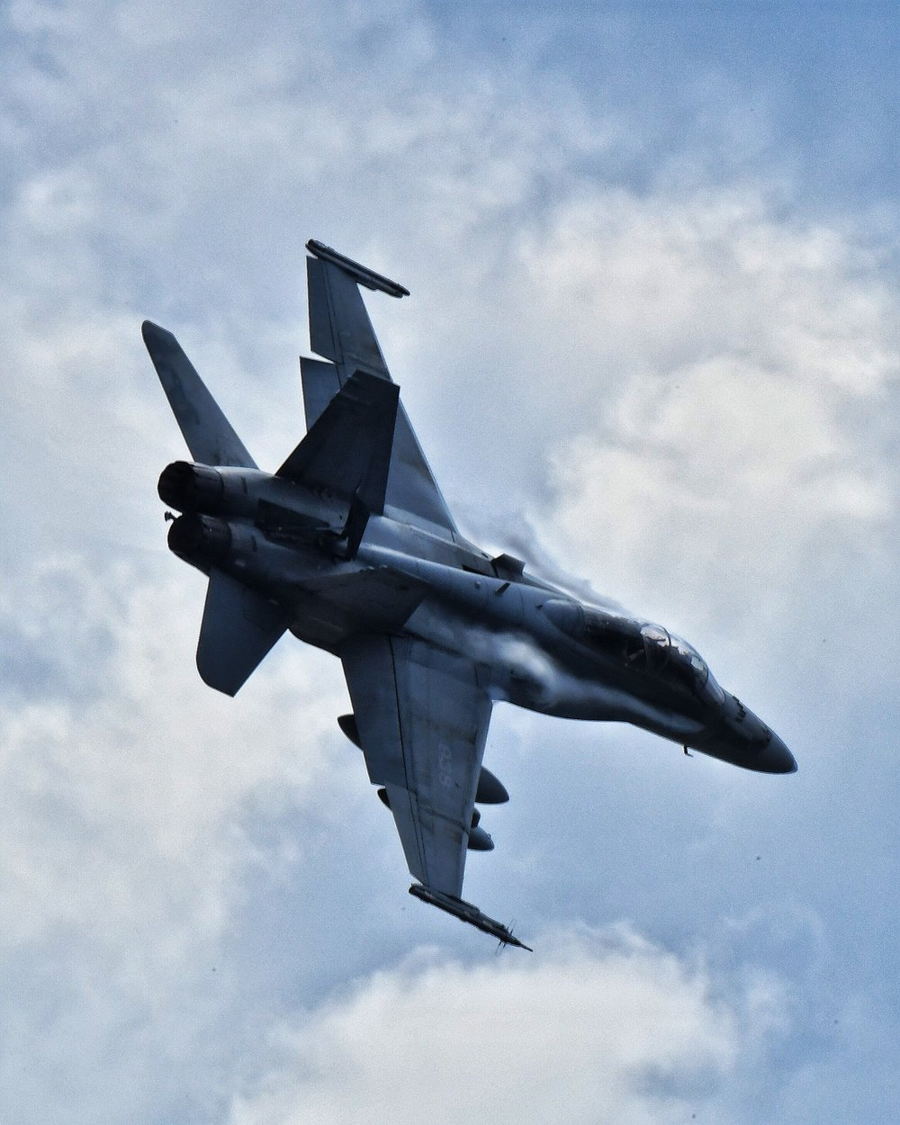 Canadian Air Force F-18