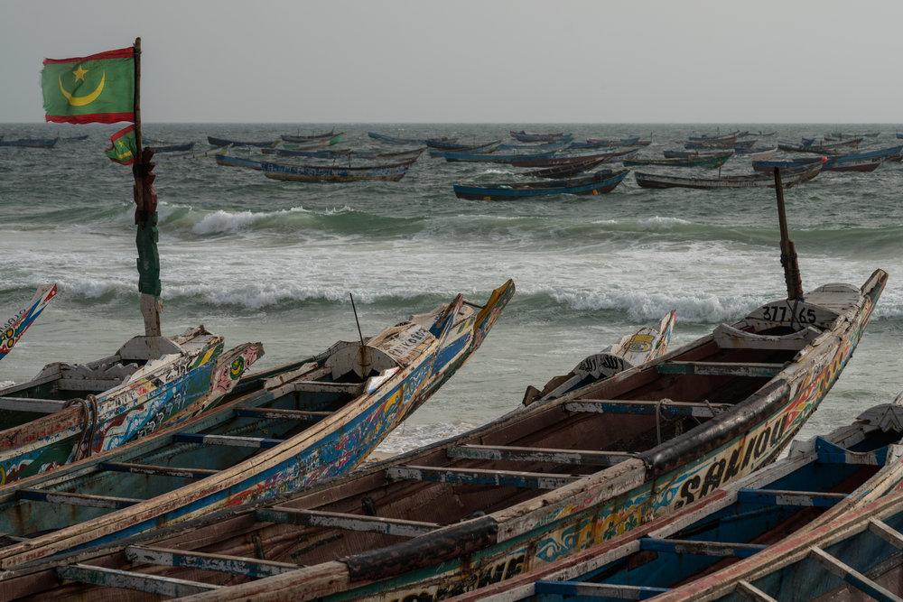 Mauritania fishing