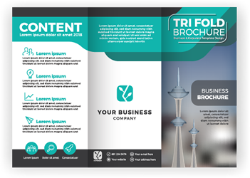 tri-fold-brochures.png