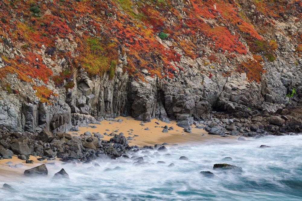 Iceplant Rainbow, Bodega Head