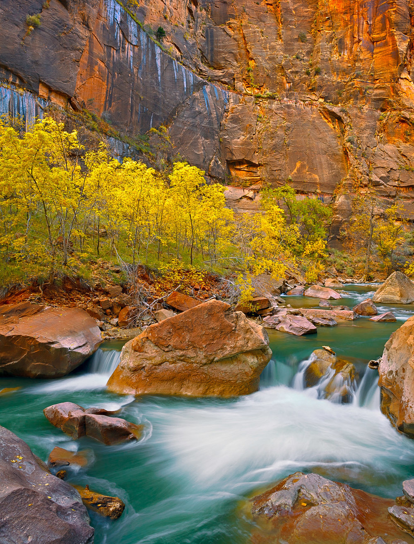 Peak of Autumn, Zion Canyon