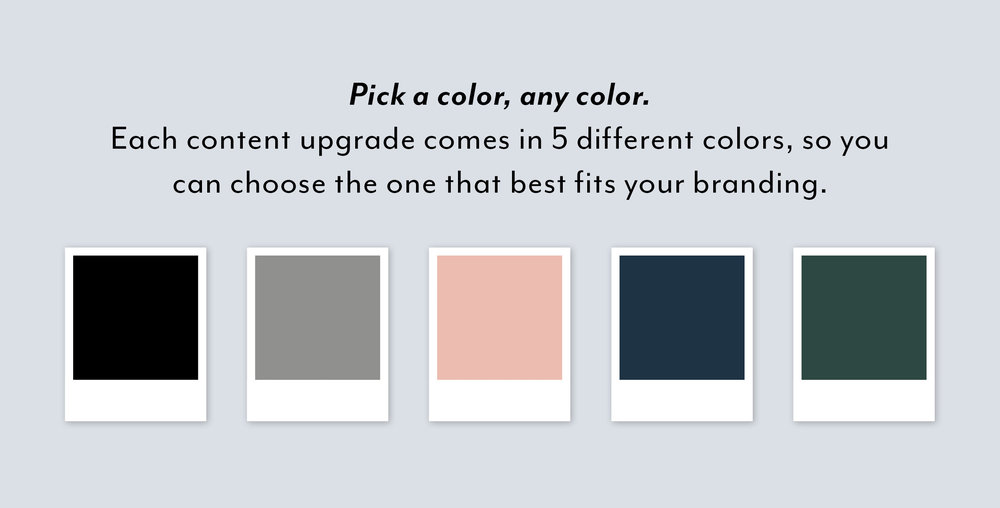 Opt-In Shop Sales Page Graphic-color options.jpg
